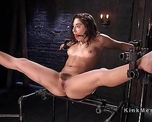Bound brunette hair endurs ache from giant sex-toy